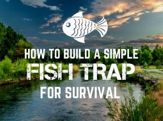 How to Build a Simple Fish Trap for Survival |With Pictures!