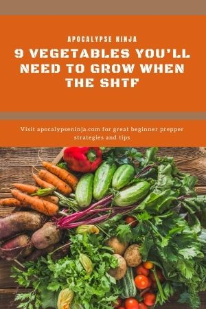 how to grow vegetables pin